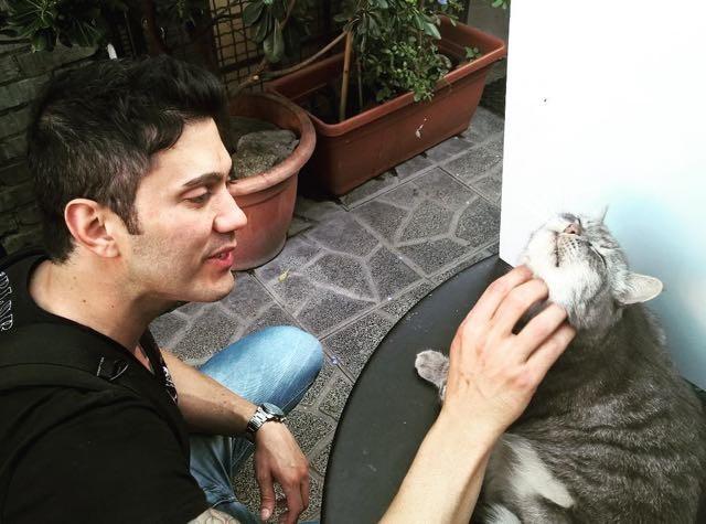 cat-traveler-03