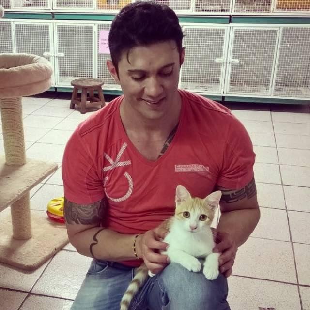 cat-traveler-04