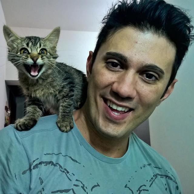 cat-traveler-08