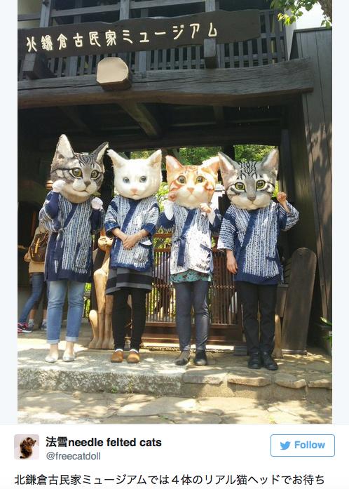 big-head-cat-01