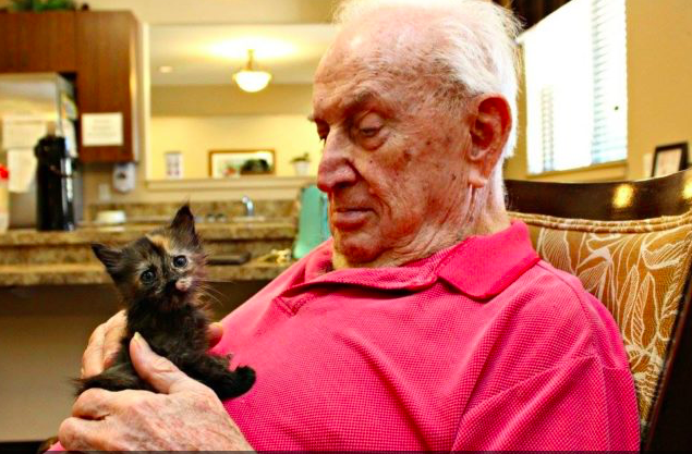assisted-living-cat-04