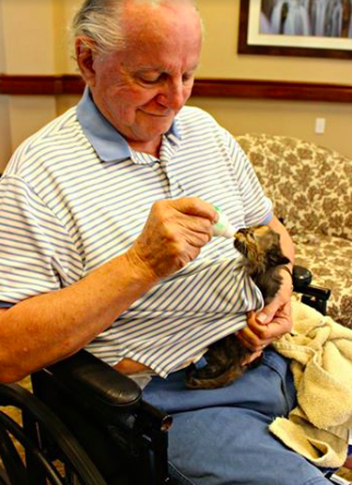 assisted-living-cat-06