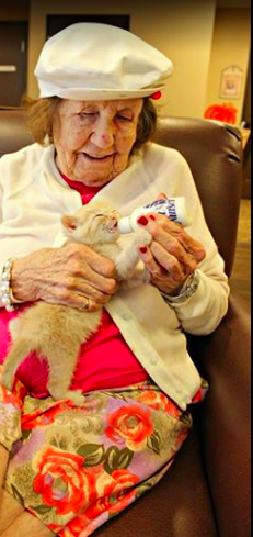 assisted-living-cats-03