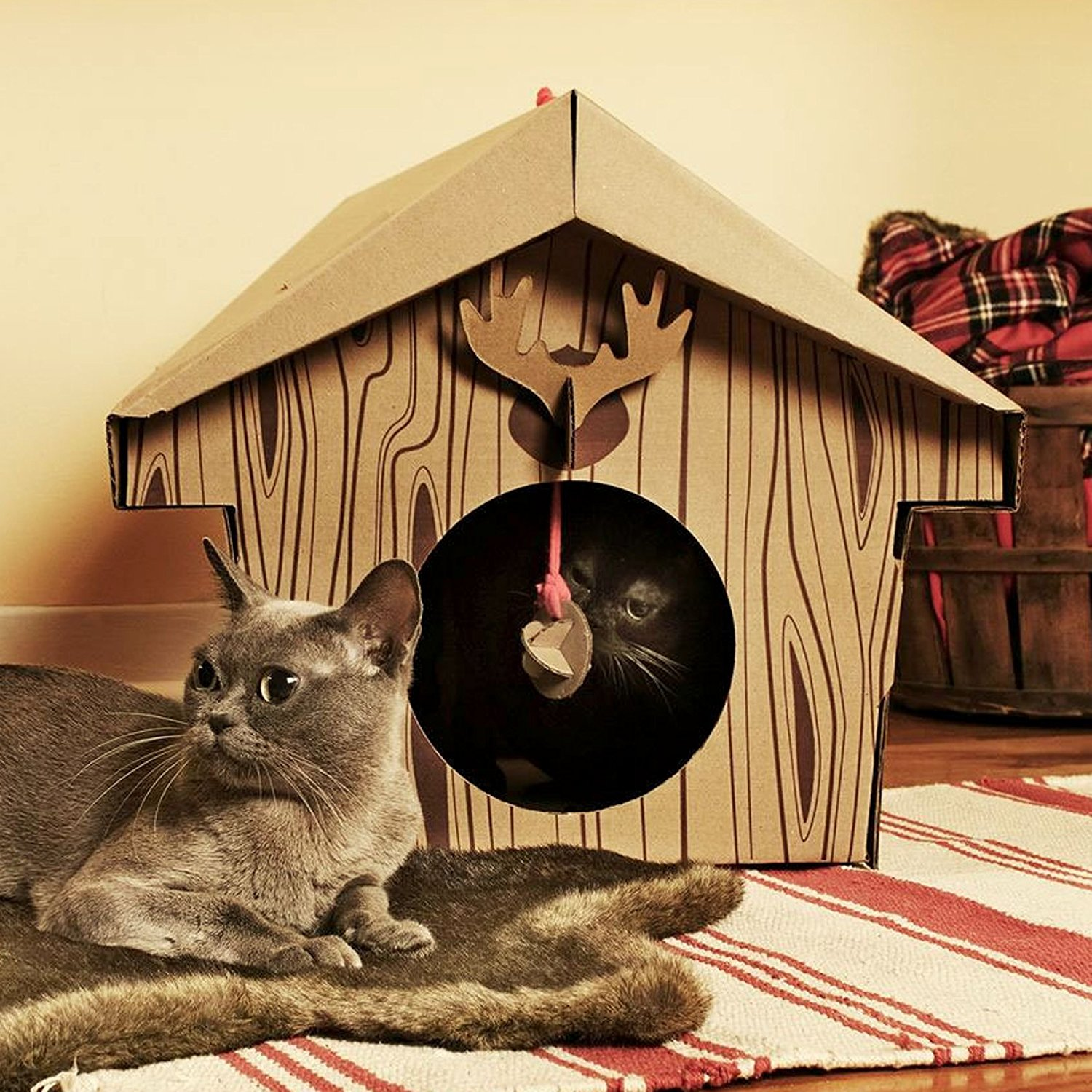 cat-playhouse-scratching-toys-8