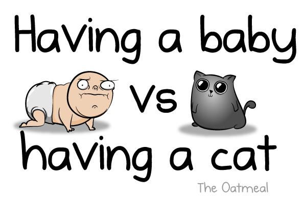 babies-vs-cat-01
