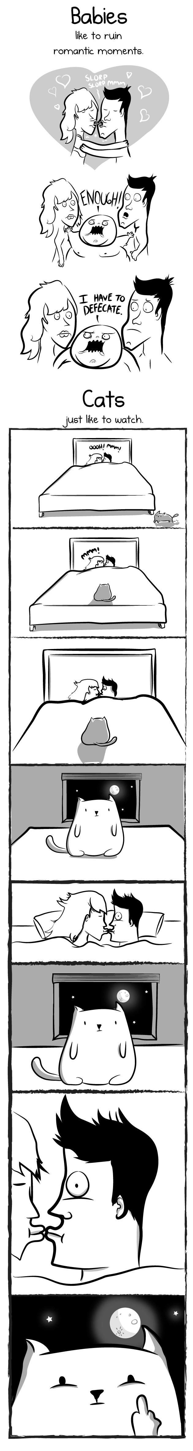 babies-vs-cat-06
