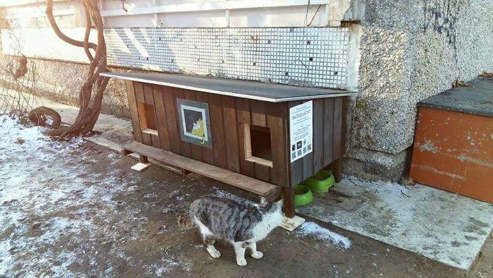 cat-tiny-homes-06