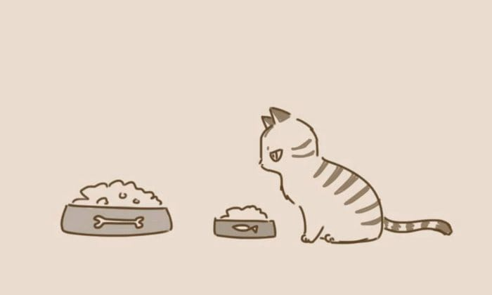 comic-unexpected-side-of-cats-14