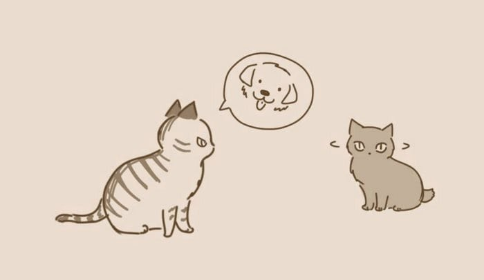 comic-unexpected-side-of-cats-17