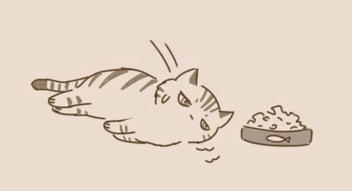 comic-unexpected-side-of-cats-23