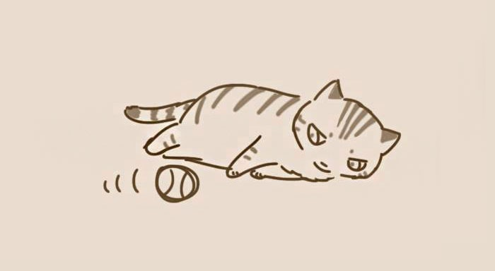 comic-unexpected-side-of-cats-24