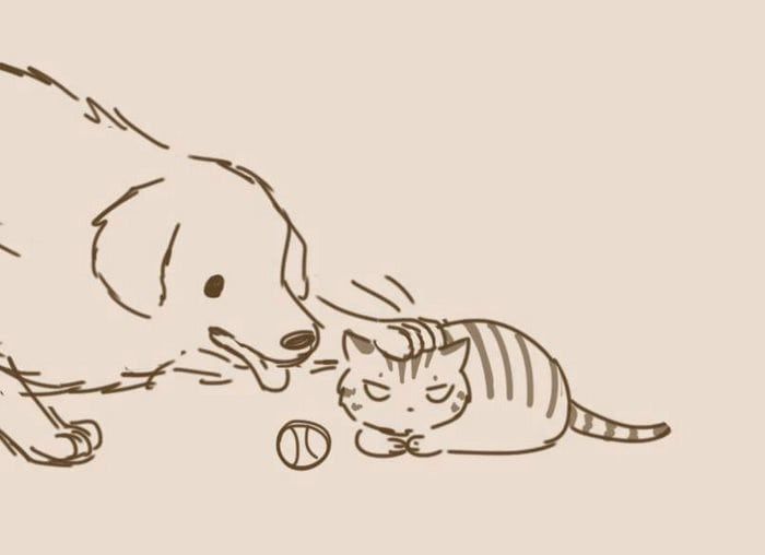 comic-unexpected-side-of-cats-3