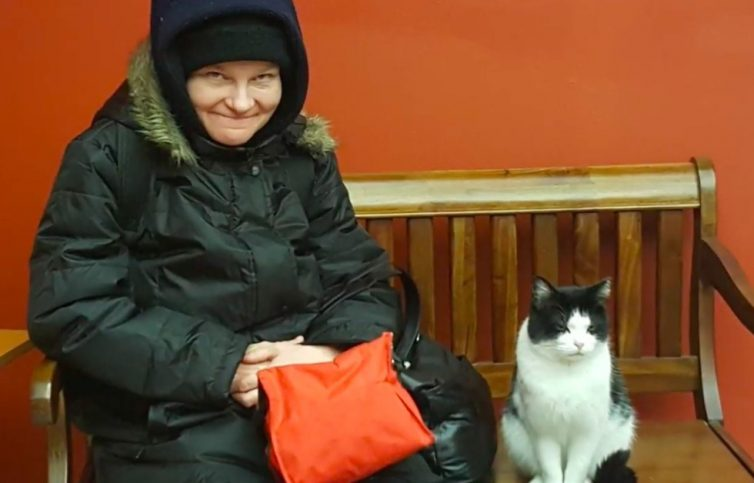 nursing-home-cat-03