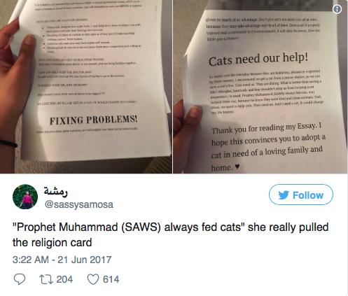 cats-report-03